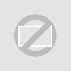 Écran 17pouces (4:3) - Support mural VESA
